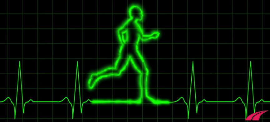 Chạy bộ và nhịp tim