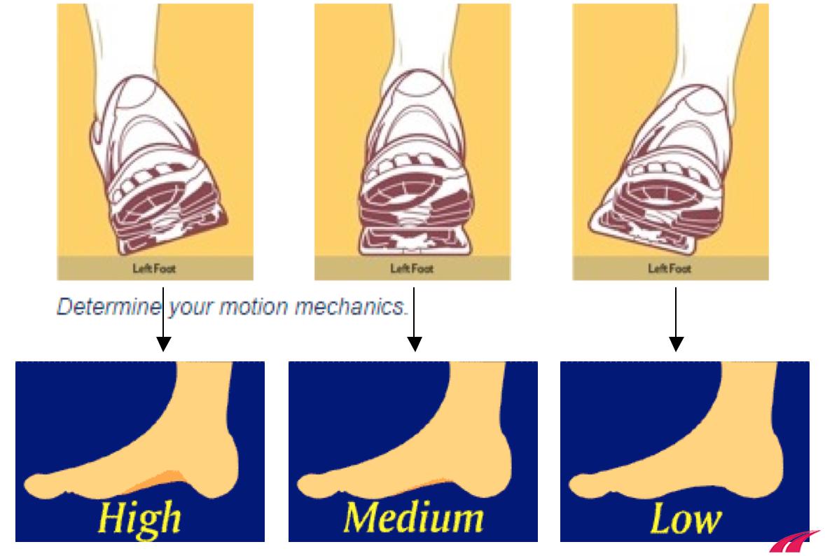 Cấu tạo vòm chân và tư thế cổ chân khi tiếp đất