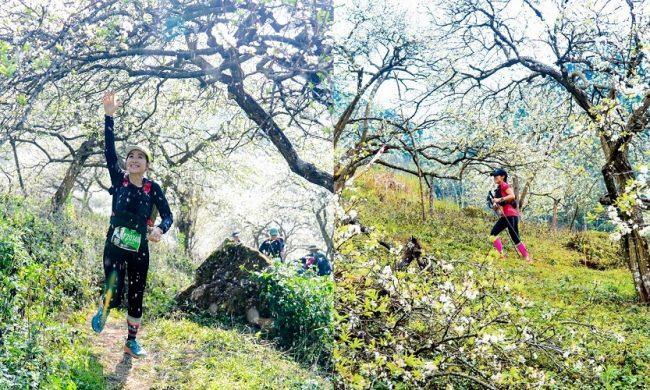 Vietnam Trail Marathon Moc Chau