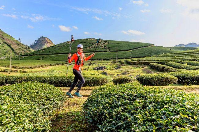 Đồi chè Trái tim ở Mộc Châu, đích đến của các runner. Ảnh: VTM